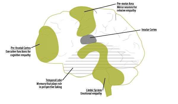Brain-Architecture