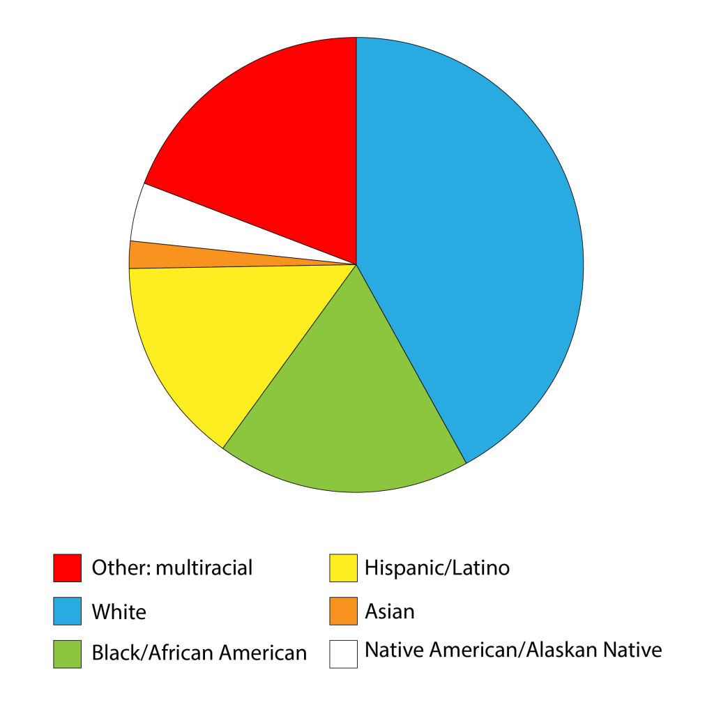 A cross-section of Opportunity Passport™'s recipients.
